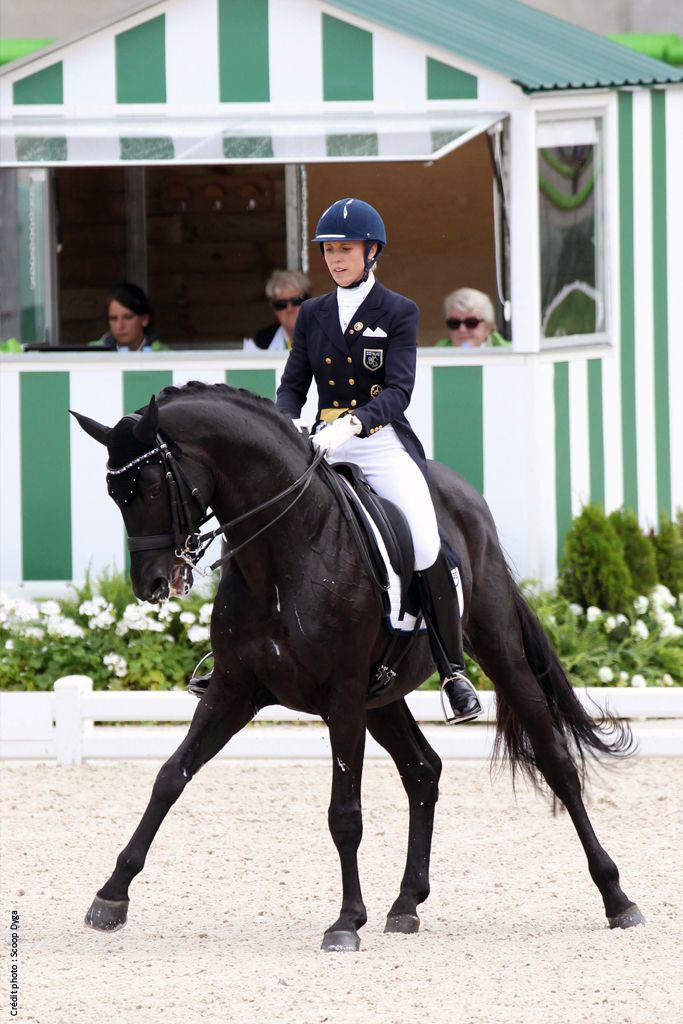 Selle de dressage monoquartier equitation Antarès pour le cheval et le poney