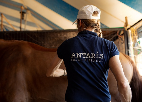 selle occasion antares sellier selle cheval selle poney en cuir sur mesure marque luxe