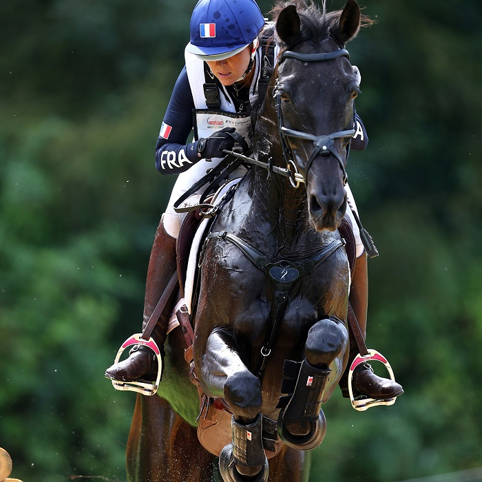 leather horse briddle horse riding helmets horse saddle antares gwendolen fer